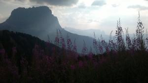 Wieder Richtung Panorama Hütte am Heim laufen...